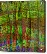 Luminous Landscape Abstract Acrylic Print
