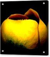 Luminous Lotus Acrylic Print