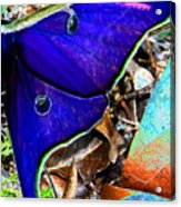Luna Moth False Color Work One Acrylic Print