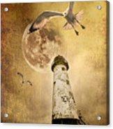 Lunar Flight Acrylic Print by Meirion Matthias