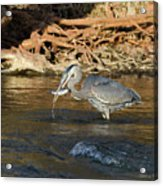 Lunch On The Neuse River Acrylic Print by George Randy Bass