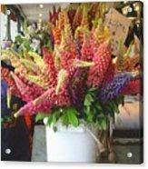 Lupine Flower Boquet Acrylic Print