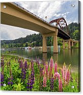 Lupine In Bloom By Sauvie Island Bridge Acrylic Print