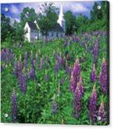 Lupines And Church Sugar Hill Acrylic Print