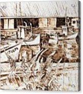 Lupines At Murray B_w Acrylic Print