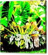 Lush Garden Acrylic Print