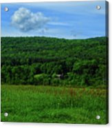 Lush Green Everything On The Ma At Acrylic Print