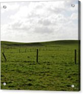 Lush Green Grass On The Cliffs Of Moher Acrylic Print