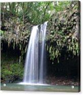 Lush Tropical Waterfall Twin Falls On Maui Hawaii Acrylic Print