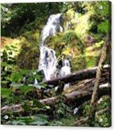 Lush Waterfall Acrylic Print