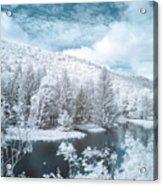 Lyman Run State Park 0376ir Acrylic Print