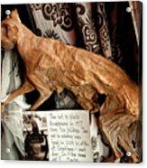 Macabre Mummified Cat - Halloween Acrylic Print