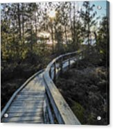 Macgregor Point Boardwalk Acrylic Print