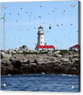 Machias Seal Island Lighthouse Acrylic Print