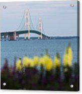 Mackinac Bridge 2 Acrylic Print