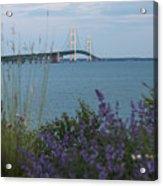 Mackinac Bridge 3 Acrylic Print