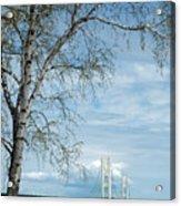Mackinac Bridge Birch Acrylic Print
