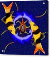 Macrachantis V1 - Colourful Fish Acrylic Print