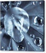 Macro - Water Drops Acrylic Print