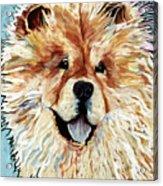 Madame Chu Cho Acrylic Print