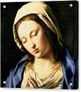 Madonna At Prayer Acrylic Print
