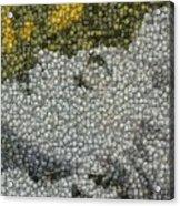 Madonna True Blue Material Girl Coins Mosaic Acrylic Print