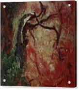 Madrona Tree Acrylic Print