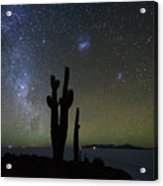 Magellanic Clouds Milky Way And Cactus Silhouette Incahuasi Island Bolivia Acrylic Print