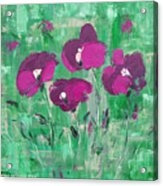Magenta Poppies Acrylic Print