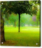 Magic Forest II Acrylic Print