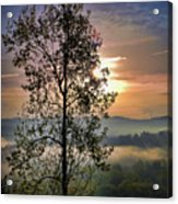 Magic Morning Acrylic Print