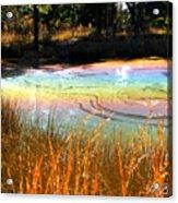 Magic Pond Acrylic Print