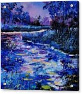 Magic Pond Acrylic Print by Pol Ledent