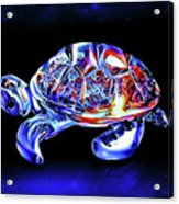Magic Turtle Acrylic Print