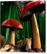 Magical Forest Acrylic Print
