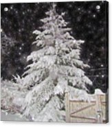 Magical Nighttime Snow Acrylic Print
