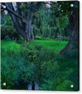 Magical Woodland Glade Acrylic Print