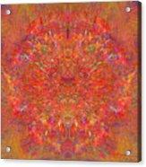 Magnificent Splatters Acrylic Print