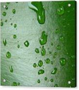 Magnifying Drops Acrylic Print