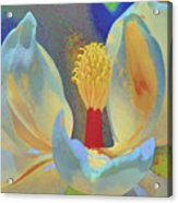 Magnolia Abstract Acrylic Print