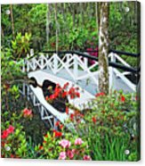 Magnolia Bridge Acrylic Print