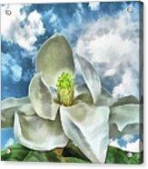 Magnolia Dreams Acrylic Print
