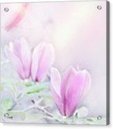 Magnolia Flowers Watercolor Acrylic Print