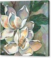 Magnolia Four Acrylic Print by Diane Ziemski