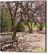Magnolia Garden 7019 Acrylic Print