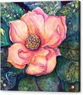 Magnolia In The Evening Acrylic Print