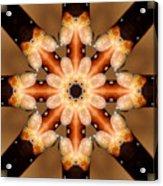 Magnolia In Winter Acrylic Print