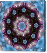Magnolia Mandala Acrylic Print