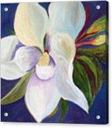 Magnolia Painting Acrylic Print