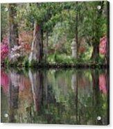 Magnolia Plantation Gardens Series Iv Acrylic Print